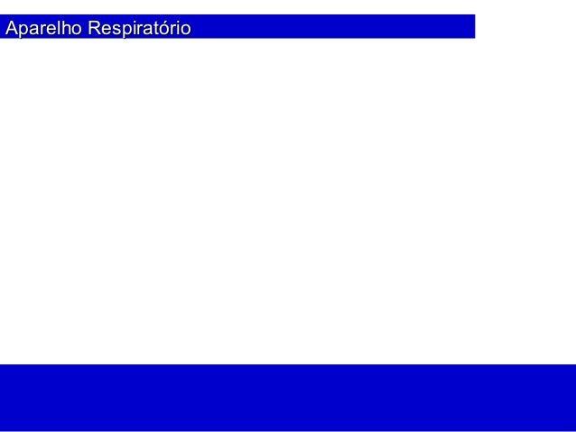 Aparelho RespiratAparelho Respiratórioório