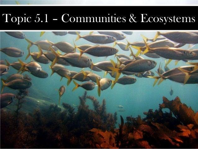 Topic 5.1 – Communities & Ecosystems
