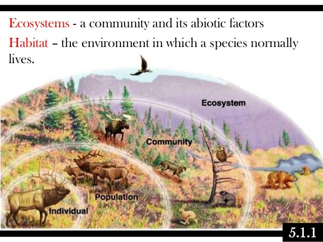 05.1 ecology - communities & ecosystems