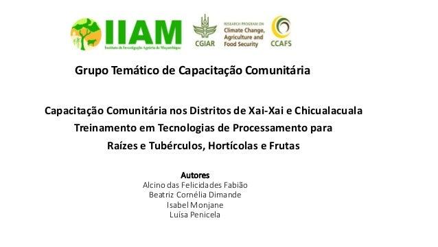 Autores Alcino das Felicidades Fabião Beatriz Cornélia Dimande Isabel Monjane Luísa Penicela Capacitação Comunitária nos D...