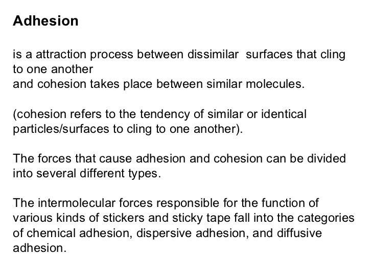 Cohesion vs adhesion yahoo dating