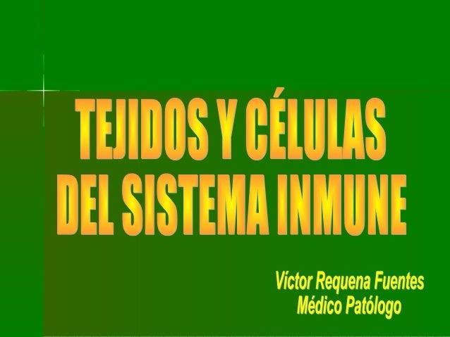 ÓRGANOS YÓRGANOS Y CÉLULASCÉLULAS LINFOIDESLINFOIDES