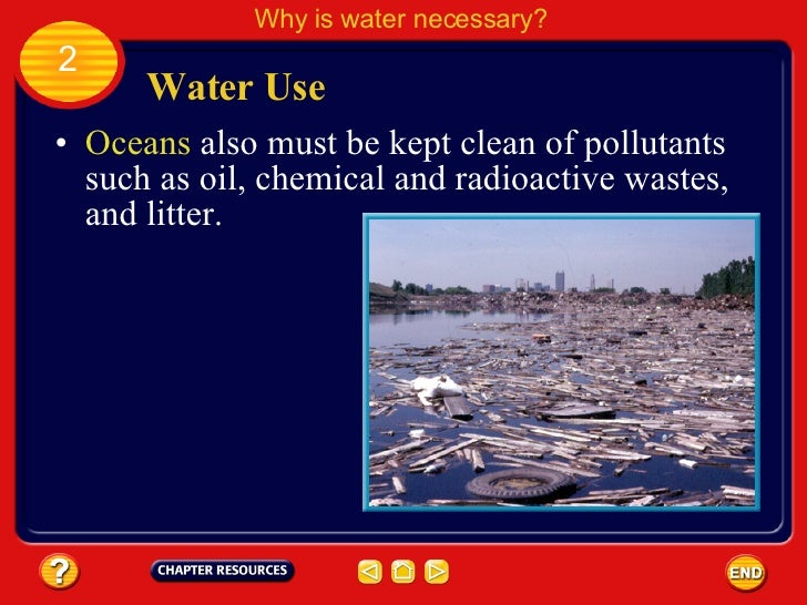 Why Clean Water Is Important For Nature And Society