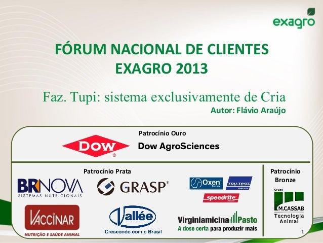 FÓRUM  NACIONAL  DE  CLIENTES   EXAGRO  2013   Faz. Tupi: sistema exclusivamente de Cria   Autor:  Flávio...