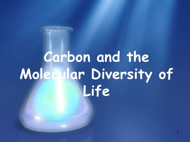 1<br />Carbon and the Molecular Diversity of Life<br />