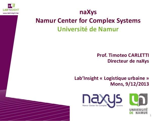 naXys Namur Center for Complex Systems Université de Namur  Prof. Timoteo CARLETTI Directeur de naXys Lab'Insight « Logist...