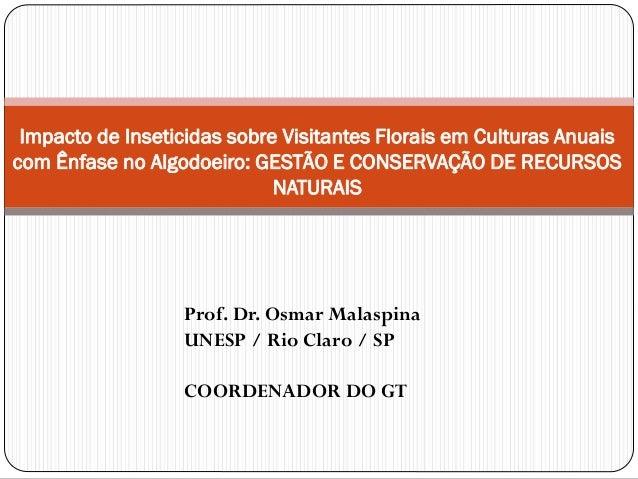 Impacto de Inseticidas sobre Visitantes Florais em Culturas Anuais com Ênfase no Algodoeiro: GESTÃO E CONSERVAÇÃO DE RECUR...