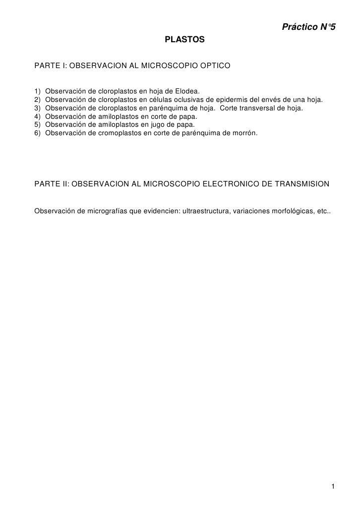 Práctico N°5                                         PLASTOSPARTE I: OBSERVACION AL MICROSCOPIO OPTICO1)   Observación de ...