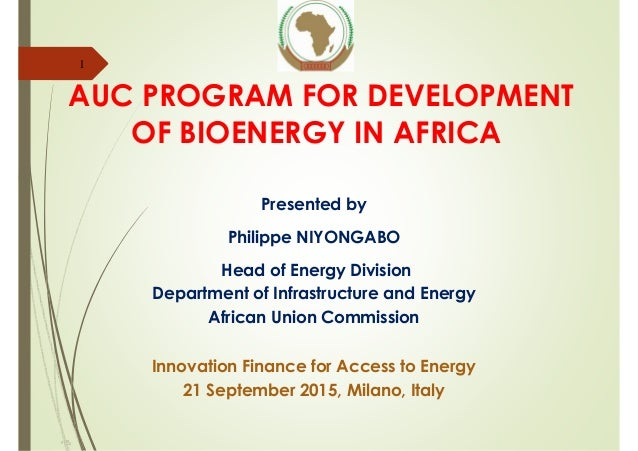 AUC PROGRAM FOR DEVELOPMENT OF BIOENERGY IN AFRICA Presented by Philippe NIYONGABO Head of Energy Division Department of I...