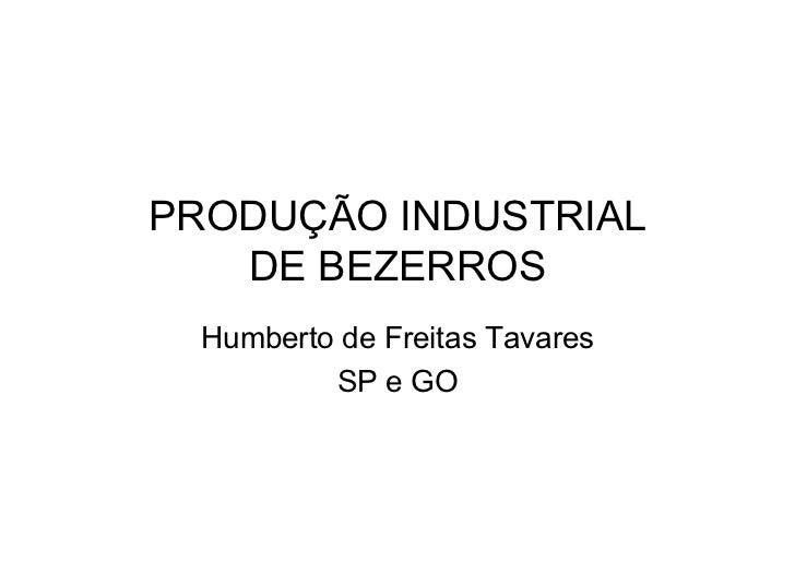 PRODUÇÃO INDUSTRIAL   DE BEZERROS  Humberto de Freitas Tavares          SP e GO