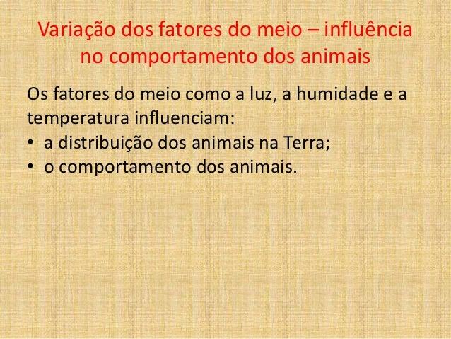 Variação dos fatores do meio – influência no comportamento dos animais Os fatores do meio como a luz, a humidade e a tempe...