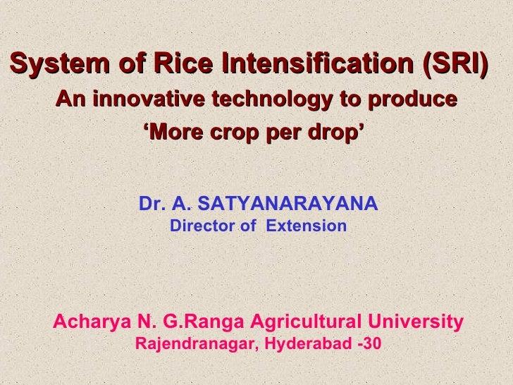 System of Rice Intensification (SRI)  An innovative technology to produce ' More crop per drop'  Dr. A. SATYANARAYANA Dire...