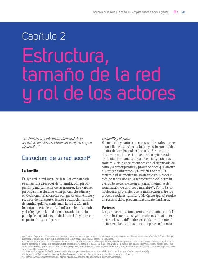 29Asuntos de familia | Sección II: Comparaciones a nivel regional 45 Sargent, c. 2014. encyclopedia of medical anthropolog...