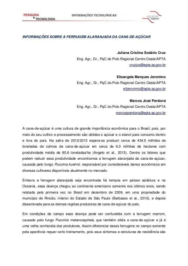 INFORMAÇÕES SOBRE A FERRUGEM ALARANJADA DA CANA-DE-AÇÚCAR Juliana Cristina Sodário Cruz Eng. Agr., Dr., PqC do Polo Region...