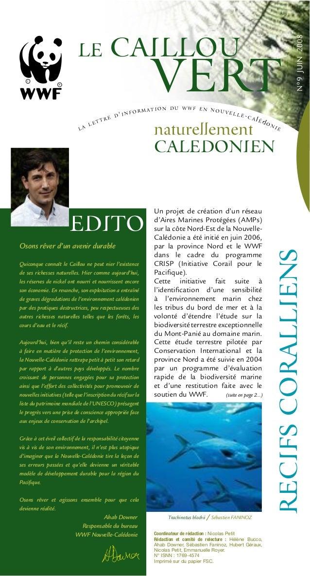N°9JUIN2008 (suite en page 2...) Osons rêver d'un avenir durable Quiconque connaît le Caillou ne peut nier l'existence de ...