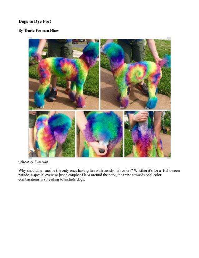 dogs to dye for