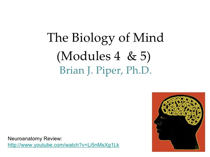 The Biology of Mind               (Modules 4 & 5)                   Brian J. Piper, Ph.D.Neuroanatomy Review:http://www.yo...