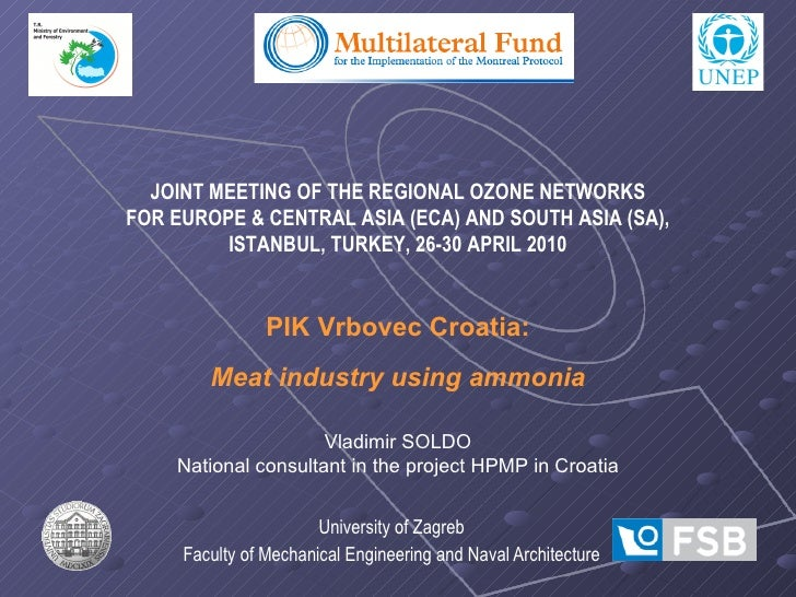 University of Zagreb Faculty of Mechanical Engineering and Naval Architecture JOINT MEETING OF THE REGIONAL OZONE NETWORKS...