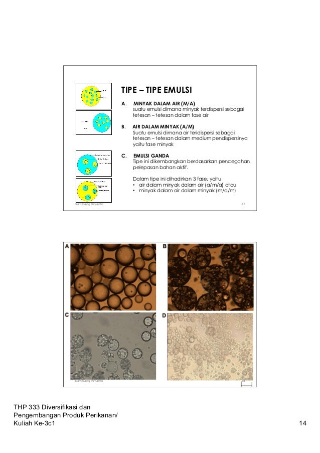 05c Teknologi Emulsions Science Seafood Products