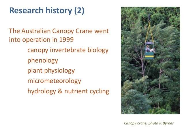 Dan Metcalfe_Long-term monitoring of tropical rainforests of eastern Australia  sc 1 st  SlideShare & Dan Metcalfe_Long-term monitoring of tropical rainforests of eastern u2026
