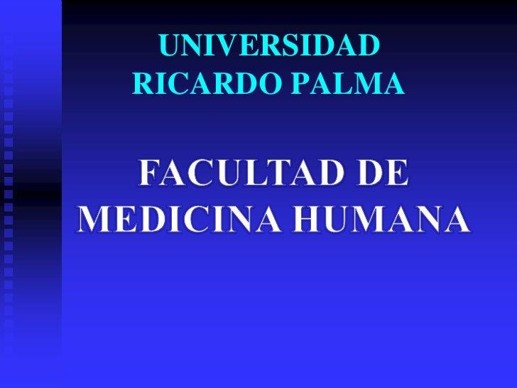 UNIVERSIDADRICARDO PALMA