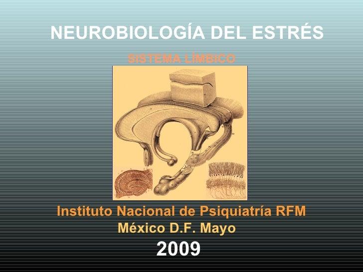 Instituto Nacional de Psiquiatría RFM México D.F. Mayo  2009 NEUROBIOLOGÍA DEL ESTRÉS SISTEMA LÍMBICO