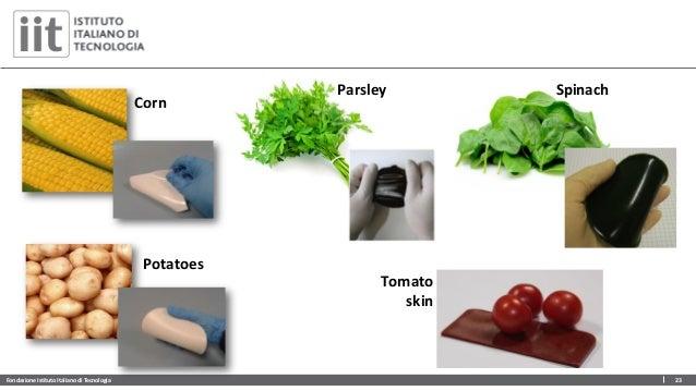 Fondazione Istituto Italiano di Tecnologia 23 Tomato skin Spinach Corn Potatoes Parsley