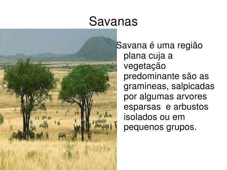 Savanas   Savana é uma região    plana cuja a    vegetação    predominante são as    gramineas, salpicadas    por algumas ...