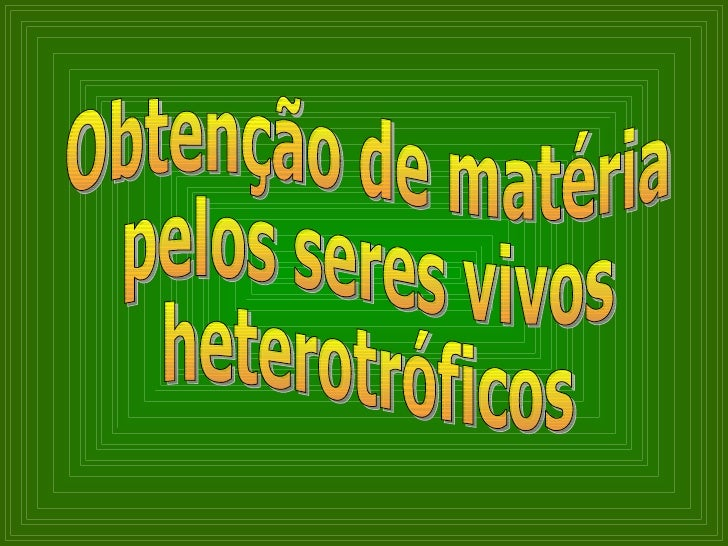 Obtenção de matéria pelos seres vivos heterotróficos