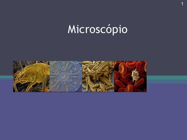 Microscópio CLUBE DE CIÊNCIAS Prof.Teresa Condeixa 0809