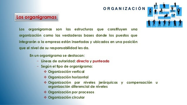 Los organigramas  O R G A N I Z A C I Ó N  Los organigramas son las estructuras que constituyen una  organización como las...