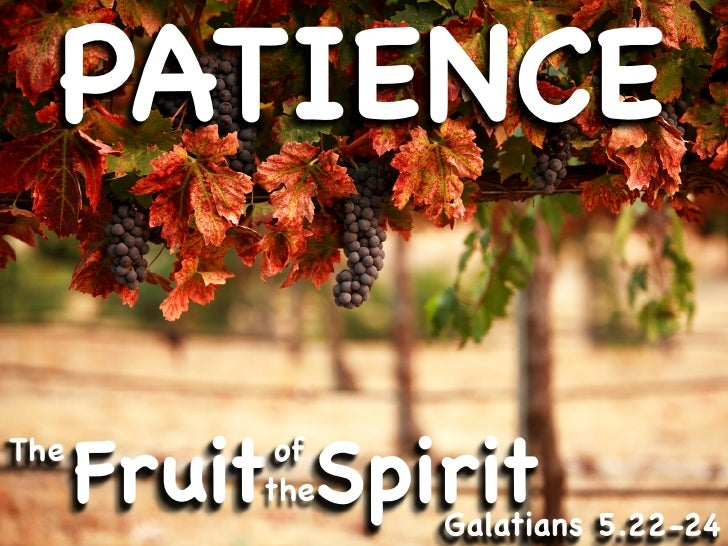 PATIENCE  The       Fruit Spirit            of           the                 Galatians 5.22-24