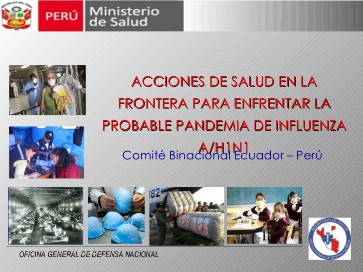 ACCIONES DE SALUD EN LA FRONTERA PARA ENFRENTAR LA PROBABLE PANDEMIA DE INFLUENZA A/H1N1 Comité Binacional Ecuador – Perú