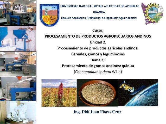UNIVERSIDAD NACIONAL MICAELA BASTIDAS DE APURIMAC                               UNAMBA       Escuela Académico Profesional...