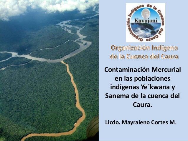 Contaminación Mercurial    en las poblaciones  indígenas Ye´kwana ySanema de la cuenca del          Caura.Licdo. Mayraleno...