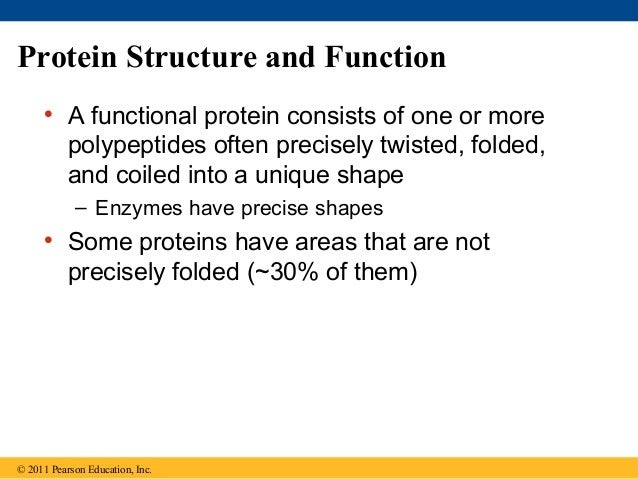 05 the structure and function of large biological molecules