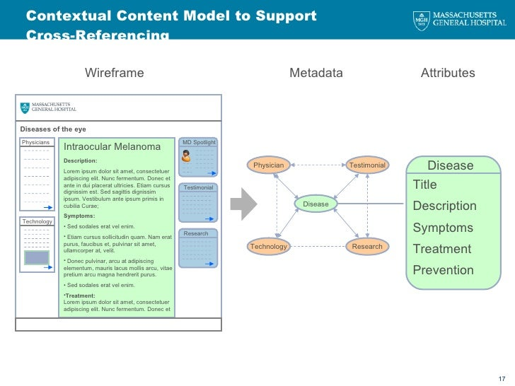 Contextual Content Model to Support Cross-Referencing Disease Title Description Symptoms Treatment Prevention Testimonial ...