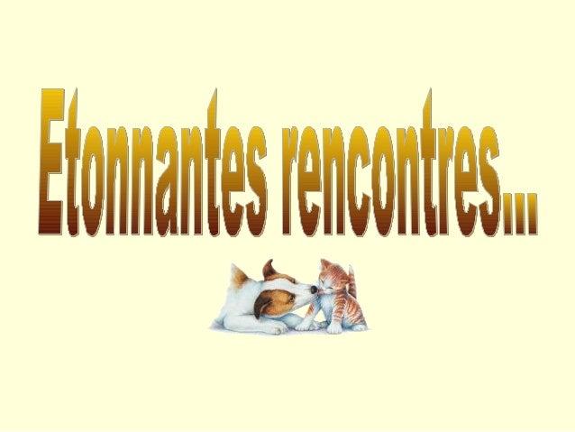 D'autres sur:    www.diaporamas-a-la-con.com   Le site des meilleurs diaporamas humoristiques[Attention le passage du poin...