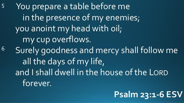 06 18 17 Psalm 23 1 6 The Shepherd