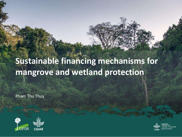 Sustainable financing mechanisms for mangrove and wetland protection Pham Thu Thuy
