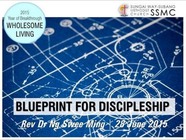 06 28 col 1 24 29 blueprint for discipleship q what is the largest living thing in the world malvernweather Choice Image
