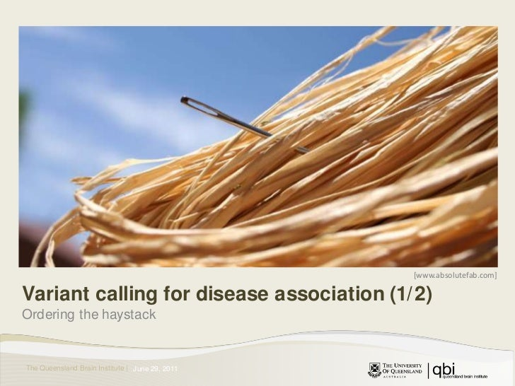 [www.absolutefab.com]<br />Variant calling for disease association (1/2)<br />Ordering the haystack<br />June 30, 2011<br />