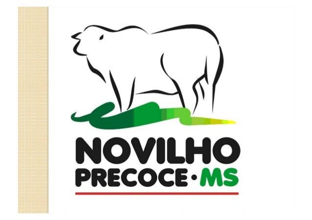 Os desafios de uma Associação de Pecuaristas – Experiência da Novilho Precoce – MS Prof. Antonio João de Almeida Diretor T...