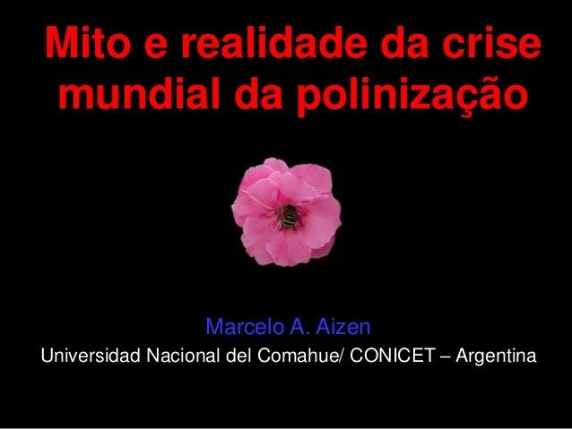 Mito e realidade da crise mundial da polinização Marcelo A. Aizen Universidad Nacional del Comahue/ CONICET – Argentina