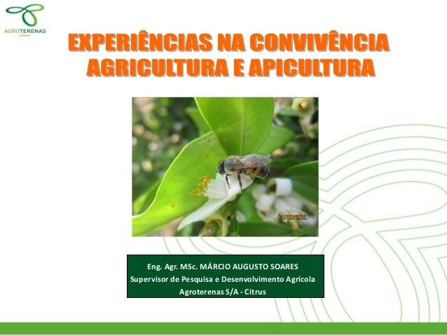 Eng. Agr. MSc. MÁRCIO AUGUSTO SOARES  Supervisor de Pesquisa e Desenvolvimento Agrícola  Agroterenas S/A - Citrus