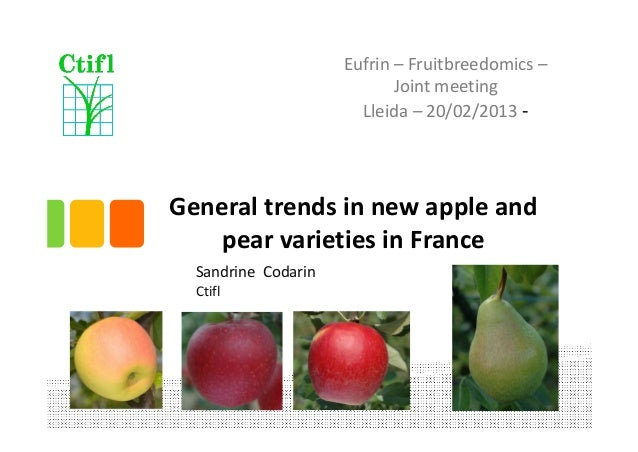 Generaltrendsinnewapple and pear varieties inFrance SandrineCodarin Ctifl Eufrin – Fruitbreedomics – Jointmeeti...