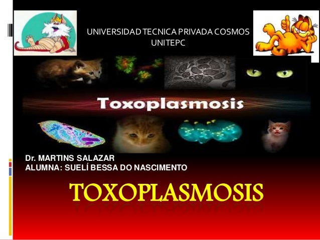 TOXOPLASMOSIS UNIVERSIDADTECNICA PRIVADA COSMOS UNITEPC Dr. MARTINS SALAZAR ALUMNA: SUELÍ BESSA DO NASCIMENTO