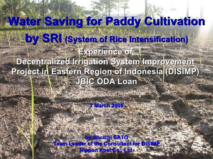 Water Saving for Paddy Cultivation by SRI   (System of Rice Intensification) Experience of  Decentralized Irrigation Syste...
