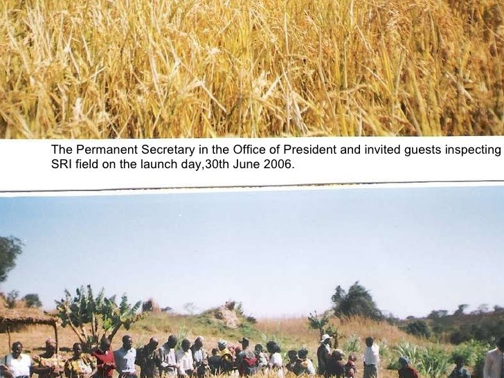 The Permanent Secretary in the Office of President and invited guests inspecting SRI field on the launch day,30th June 200...