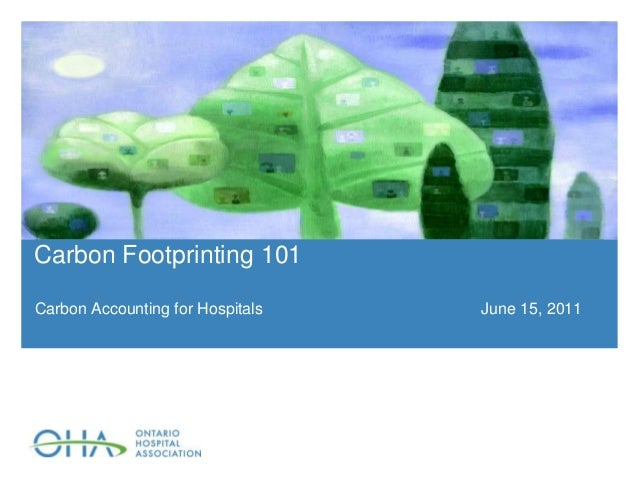 how to become a hospital accountant